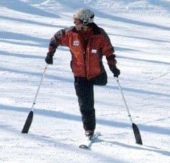 Three Track Skis