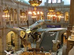 Spitfire and a Giraffe in the Same Place - Bizarre at kelvingrove Art Gallery & Museum