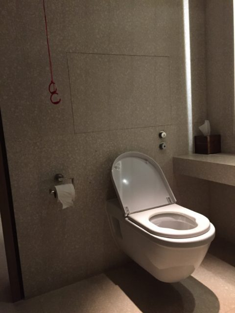 Cafe Royale Winner of Ludicrous Loo - Can You See Why? For The Uninitiated You Need Grab Rails