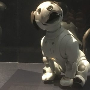 Aibo, The Artificially Intelligent Puppy Companion From Sony