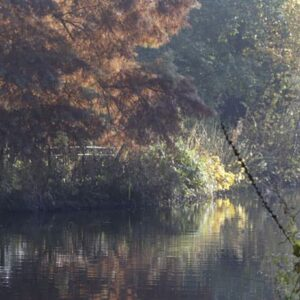 At Chiswick House There's a Lake/Stream Which Canbe Tricky to Negotiate in a Wheelchair
