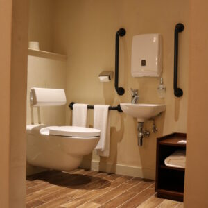Accessible Toilet With 3 Grab Rails on Wall. Unfortunately a Rail Either Side of Toilet