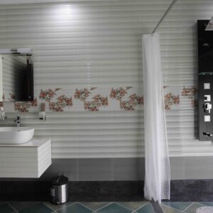 The Bathroom is Modern, With Flat Access & Walk In Shower. No Grab Rails on Show?!