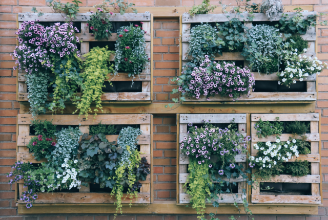 Vertical Gardens Save Space & You Don't Need to Bend to Reach